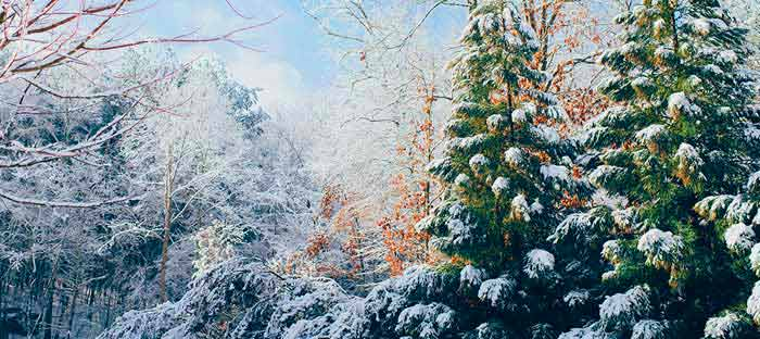 winter is a wonderful time to enjoy shopping, dining, and the wonderful sights in Clinton, Hunterdon County NJ